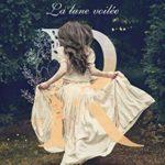La lune voilée de Karen Robards