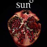 Midnight Sun de Stephenie Meyer